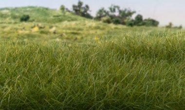 Static Grass Dark Green