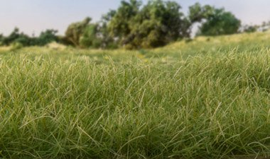 Static Grass Medium Green